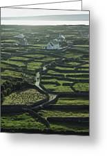 Inisheer, Aran Islands, Co Galway Greeting Card