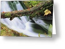 Ireland Waterfall Greeting Card