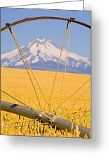 Irrigation Pipe In Wheat Field With Greeting Card