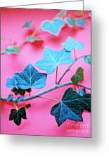 Ivy Leaves Greeting Card