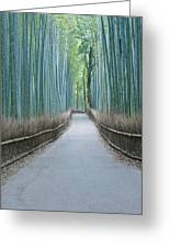 Japan Kyoto Arashiyama Sagano Bamboo Greeting Card by Rob Tilley