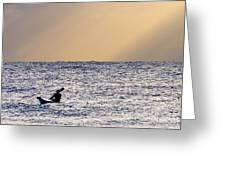 Kayak At Dawn Greeting Card
