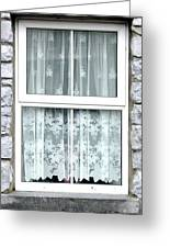 Lace Curtains Greeting Card