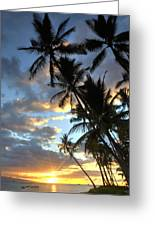 Lahaina Greeting Card by James Roemmling
