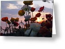 Lake Geneva Sunset Greeting Card