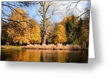 Lazienki Park Autumn Scenery Greeting Card