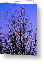 Leaves 3 Greeting Card
