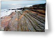 Lichen On The Rocks Greeting Card
