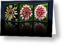 Life Of A Zinnia Greeting Card