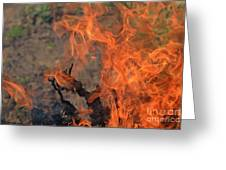 Log Fire And Flames Greeting Card