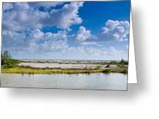 Lovers Key Beach Greeting Card