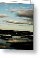 Lowcountry Marsh Front Greeting Card