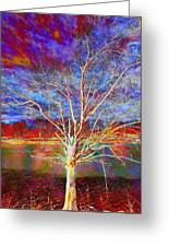 Magical Tree 3 Greeting Card