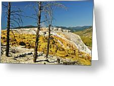 Mammoth Upper Terrace Greeting Card