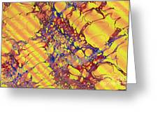 Marbled Paper Greeting Card