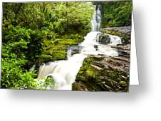Mclean Falls In The Catlins Greeting Card