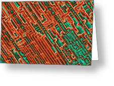 Microchip Circuitry, Sem Greeting Card by Power And Syred
