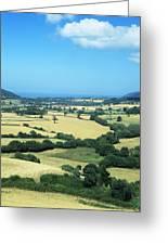 Mixed Farmland Greeting Card