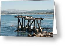 Monterey City Center Greeting Card