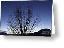 Moon And Venus Conjunction Greeting Card