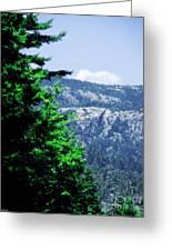 Mt Desert Island Maine Greeting Card
