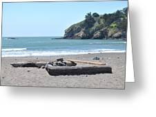 Muir Beach Greeting Card