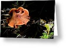 Mushroom 1 Greeting Card