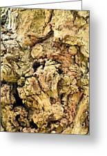 Natural Abstract 44 Greeting Card