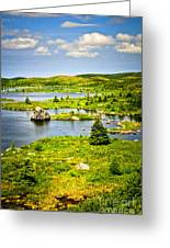 Newfoundland Landscape Greeting Card by Elena Elisseeva