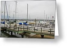 Newport Bay And Balboa Island Greeting Card