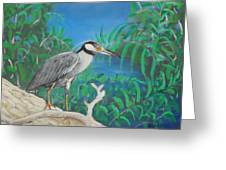 Night Heron Greeting Card