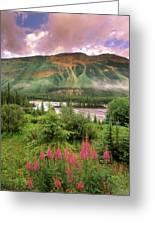 North Saskatchewan River Greeting Card