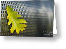 Oak Leaf Greeting Card