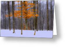 October Flame Greeting Card