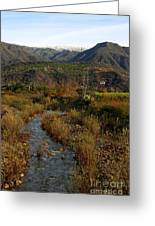 Ojai Valley Greeting Card