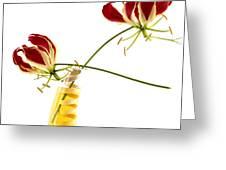 Orchids Greeting Card by Bernard Jaubert