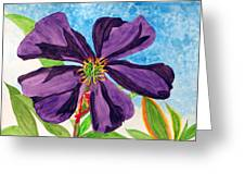 Our Very Bold Tibouchina Greeting Card