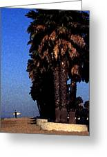 Palm Trees At Surfers Point Greeting Card