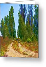 Paradise Road Greeting Card by Randall Nyhof
