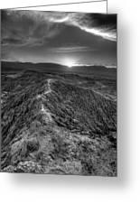 Path To The Sun   Black And White Greeting Card