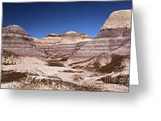 Petrified Forest Blue Mesa Greeting Card