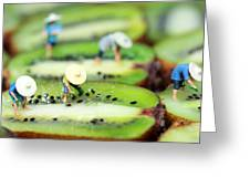 Planting Rice On Kiwifruit Greeting Card