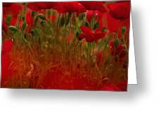 Poppy Flowers 06 Greeting Card by Nailia Schwarz