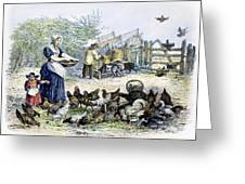 Poultry Yard, 1847 Greeting Card