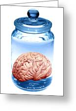 Preserved Brain, Artwork Greeting Card