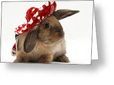 Rabbit Wearing A Hat Greeting Card