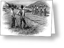 Railroad Construction Greeting Card