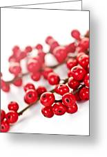 Red Christmas Berries Greeting Card