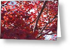 Red Leaves 2 Greeting Card