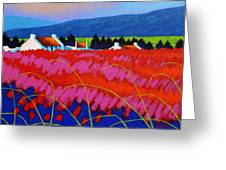 Red Meadow Greeting Card